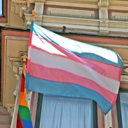 """Unspeakably freeing"": being transgender"
